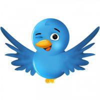 Twitter-bird-2-300x300 copy