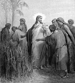Disciples Picking Grain Sabbath, by Gustave Doré
