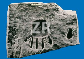 Gallery-ARCHEOLOGY-INSCRIPTIONS-5383-1-Khirbet El-Qom inscription.jpg